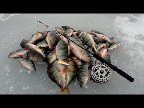 Рыбалка на чудском озере 2016 апрель
