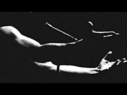 Bernard Lavilliers - La Fleur Du Mal