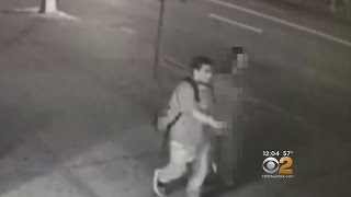 Police: Attempted Rape Caught On Video In Brooklyn