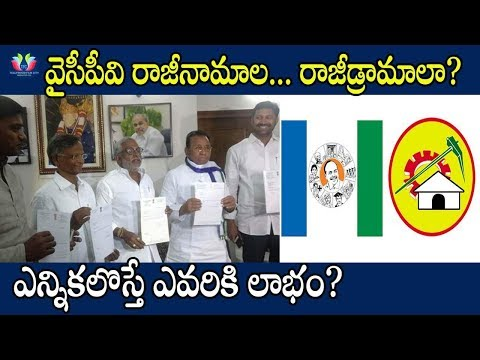 YSRCP MP's Started Resignation Drama | YSRCP Political Strategy | 2019 Assembly Elections | TFC News