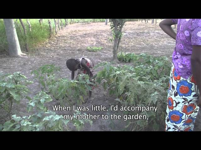 FarmQuest - Reality Radio in Mali: Meet Awa