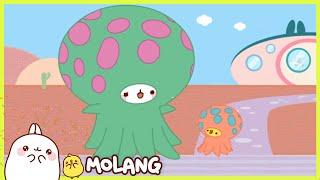 Molang - The aquarium | Full Molang episodes - Cartoon for kids