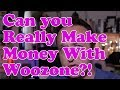 Can you REALLY MAKE MONEY with a Woozone Amazon Affiliate site? BEERSHIRTS UPDATE!