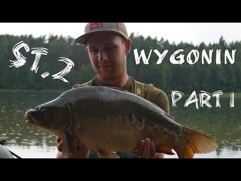 Vlog 6 - Wygonin