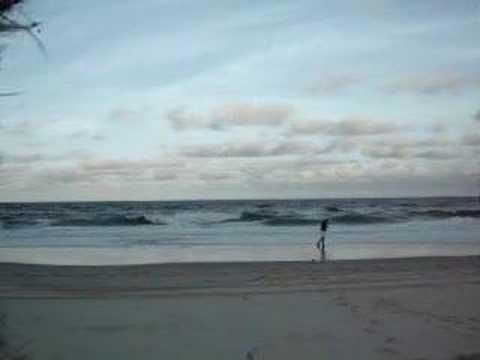gold coast australia surfing. Surf#39;s Up! Gold Coast,