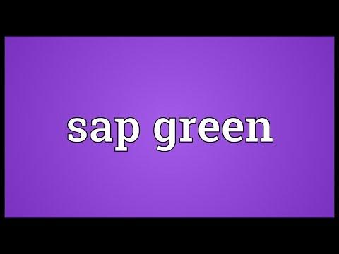 Header of Sap green