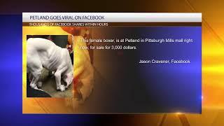 Petland in Pittsburgh Mills under social media fire