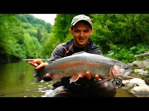 TFF TV 2 Ловля на нимфы в Закарпатье / Fly Fishing on nymph in Carpathians river.