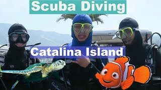 CATALINA ISLAND - SCUBA DIVING FOR THE FIRST TIME