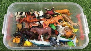 Aprende los Animales con juguetes para niños - Sonidos de animales y nombres en ingles