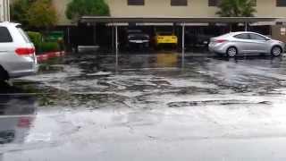 California Vacation Rain Rain Rain 2014