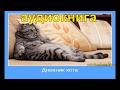 Дневник Кота слушать параллельно с Дневник Домового mp3