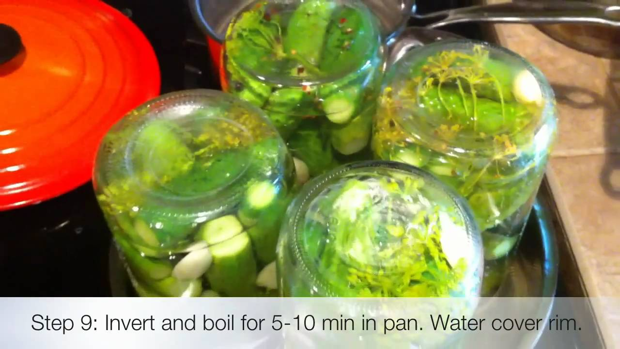 Homemade Dill Pickles - YouTube