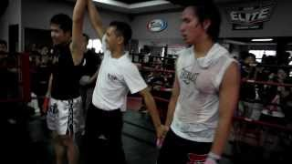 Elite Fight Day 7 - Boxing, Kickboxing & Muay Thai Amateur Fights (Elite Training Camp)