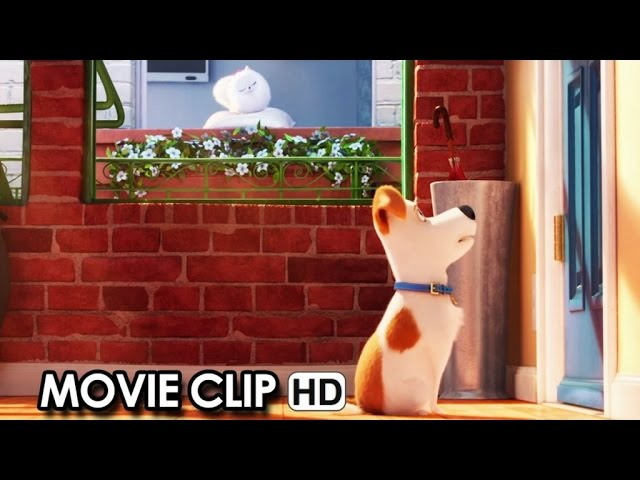 Meet Max & Gidget from 'The Secret Life Of Pets' (2016) HD