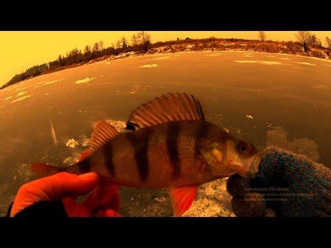 рыбалка безмотылка вконтакте