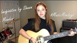 Imagination - Shawn Mendes (Cover by Amanda Nolan)