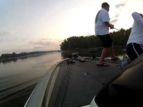 frog bass on lake guntersville