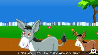Nursery Rhymes | Learn About Donkey | Animals Rhymes | Kids Songs With Lyrics By TingooKids