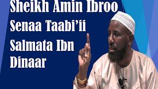 Salmata Ibn Dinaar ~ Sheikh Amin Ibroo