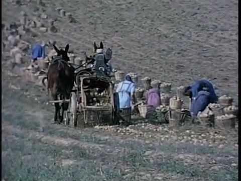 The Amish: A People of Preservation Video