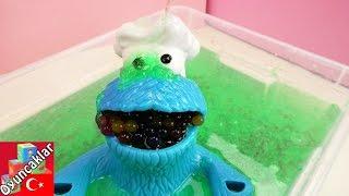 Orbeez Topları ve Glibbi Slime Havuzu Yapıyoruz Türkçe - Kurabiye Canavarı ile Eğlence!