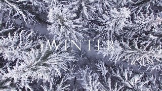 34 Winter 34 By Michele Mclaughlin 2018 Official Audio