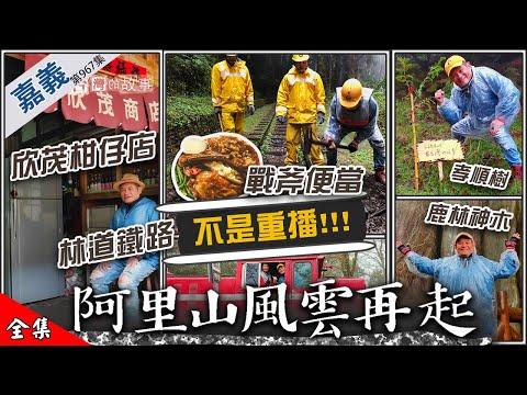 台灣-在台灣的故事-20200421 欣茂柑仔店 林道鐵路 戰斧便當 鹿林神木 孝順樹