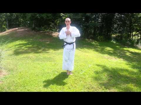 Isshinryu Karate Katas - White to Black Belt. Image 1