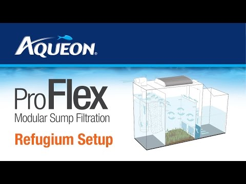 Aqueon Proflex Sump Refugium Setup Youtube