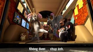 The Madagascar Penguins in a Christmas Caper (2005) - Official Trailer