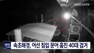 속초해경, 어선 침입 문어 훔친 40대 검거