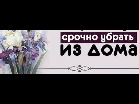 ШОК!! ШТУКА В ДОМЕ, ОТ КОТОРОЙ ЛУЧШЕ ИЗБАВИТЬСЯ , ИНАЧЕ ..11.02. 2018 г.