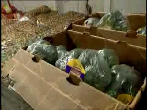 Food Bank - Faces of Hunger