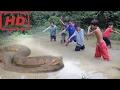 Вау Удивительные Храбрые Мальчики Поймают Большую Змею С Помощью Жаберной Сети Как Поймать Водян mp3