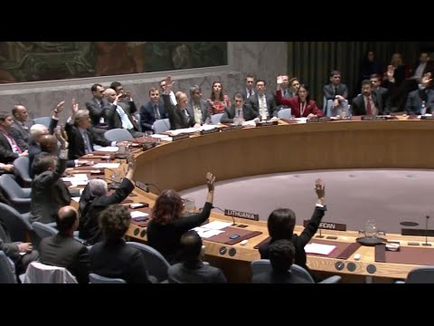 UN Security Council Adopts Resolution on Preventing IS Attacks