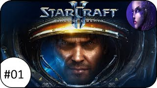 WAS BISHER GESCHAH | #01 | StarCraft II - Wings of Liberty | Flu - BetterNotGames
