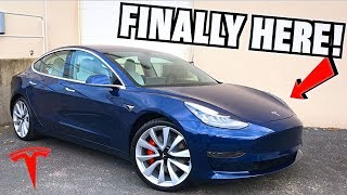 Taking Delivery Of Our Tesla Model 3 Performance Dual Motor!