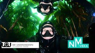 Norgesserien i undervannsrugby, runde 1, video 1