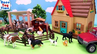 Cows and Farm Animals Toys For Kids - Learn Animals Name