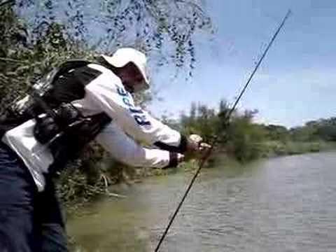 A PESCARIA DA PIRANHA, Fishing for Piranha,  垂釣食人魚, ピラニアのための釣り