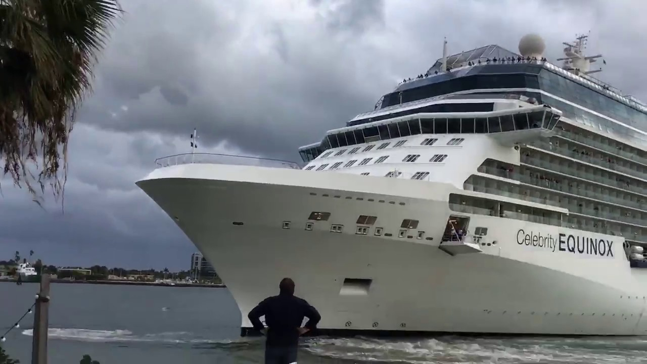 [You Know What Happens Once You Feed A Stray Cruise Ship] Video