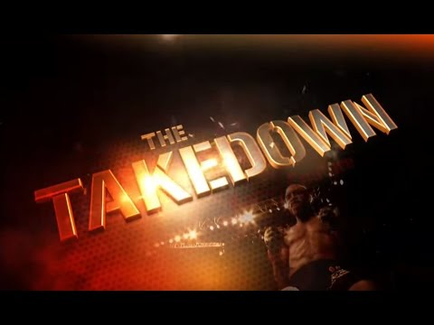 THE TAKEDOWN:  BEST POUND FOR POUND FIGHTERS Image 1