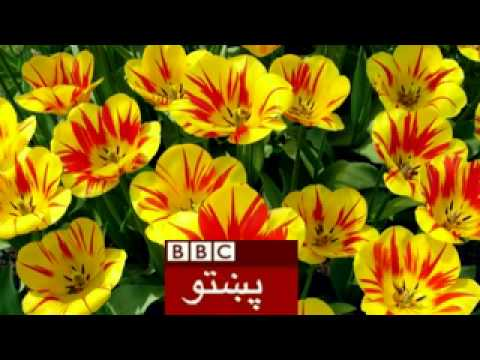 ★★american Army 10 Year In Afghanistan Bbc Pashto video