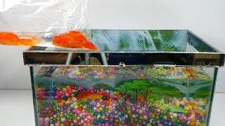 Cu lỳ mua bể kính nuôi cá ba đuôi - mini fish aquarium toy