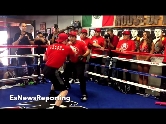 Best Boxing Fights For Conor McGregor - Floyd Canelo GGG Thurman Errol Spence Mikey Garcia