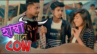 হাম্বা মানে Cow   Dhaka Guyz   Qurbani Special   Bangla Funny Video 2018