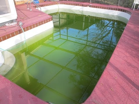 How To Shock Your Pool With Hth Green To Blue Shock Treatment How To Save Money And Do It