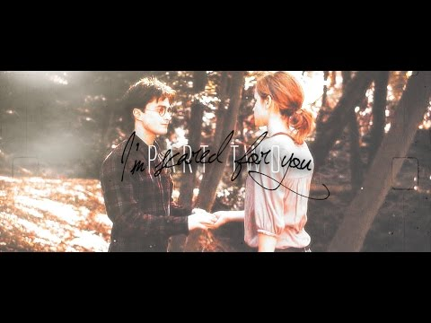 harry+hermione | i'm scared for you (part 2).