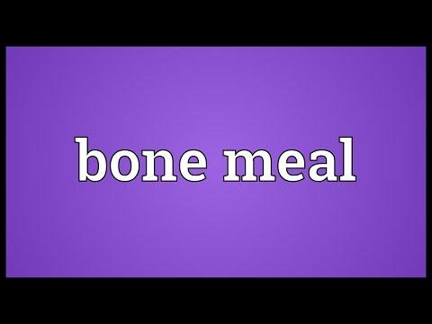 Header of bone meal